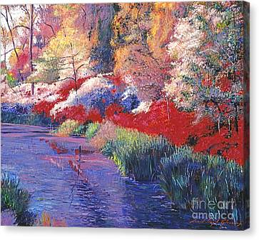 Spring Azalea Reflections Canvas Print by David Lloyd Glover