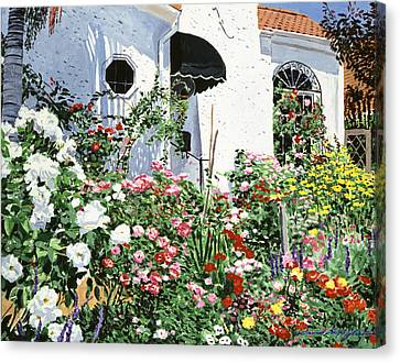 Summer Garden Flowers Canvas Print by David Lloyd Glover