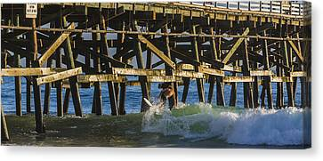 Surfer Dude 5 Canvas Print by Scott Campbell