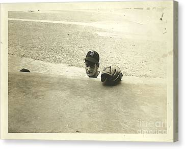 Ted Williams Canvas Print by Diane Diederich