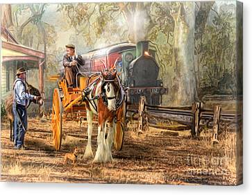 The Four O'clock Canvas Print by Trudi Simmonds