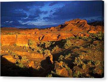 The Gobi Canvas Print by Anonymous