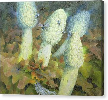The Green Man With Fly Agaric Canvas Print by Glyn Morgan
