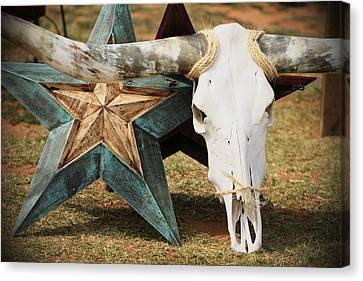 The Heart Of Texas Canvas Print