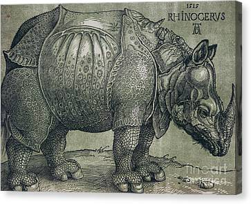 The Rhinoceros Canvas Print by Albrecht Durer