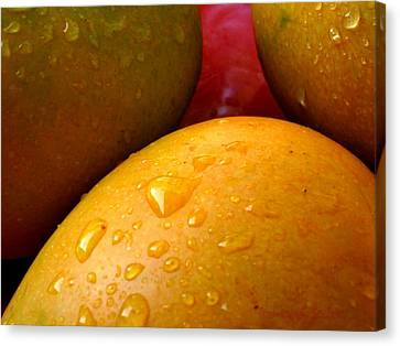 Canvas Print featuring the photograph  Tres Mangoes by Greg Allore