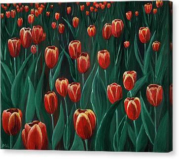 Tulip Festival Canvas Print by Anastasiya Malakhova