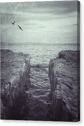 Vermont Lake Champlain Shoreline Black And White Canvas Print by Andy Gimino