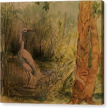 White  Bird Posed Canvas Print