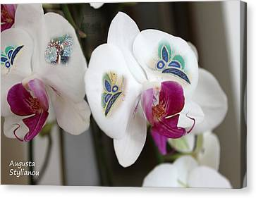 White Orchids And Butterfies Canvas Print by Augusta Stylianou