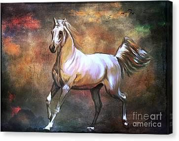 Wild Horse. Canvas Print by Andrzej Szczerski