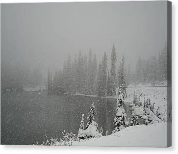 You Can Almost Hear The Snow In This Peace  Canvas Print