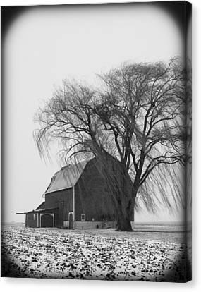 020213-67   Prairie Winter II Canvas Print by Mike Davis