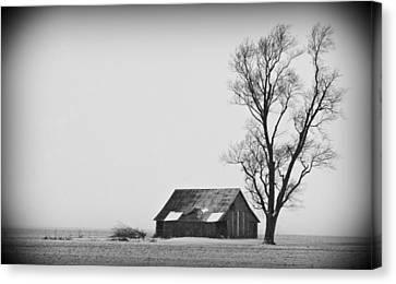 020213-73   Prairie Winter Canvas Print by Mike Davis
