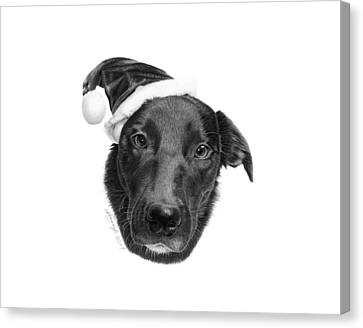 039 - 2014 Emmie Christmas Canvas Print