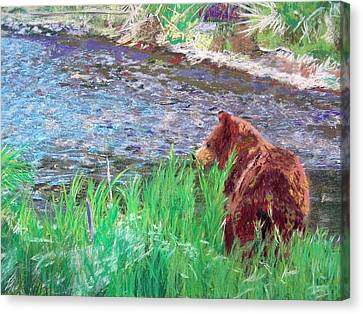 082714 Black Bear Pastel Canvas Print by Garland Oldham