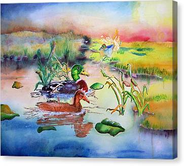 082814 Mallards At Dawn Canvas Print