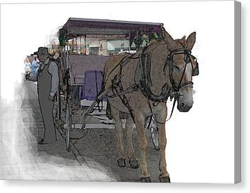 091614 Color Pencil Mule And Carriage Canvas Print by Garland Oldham