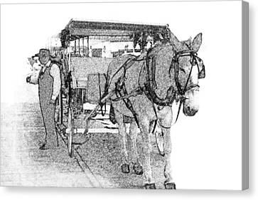 091614 Pen Drawing Carriages French Quarter Canvas Print by Garland Oldham