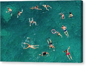 Swim Canvas Print - @@ by Carlo Tonti