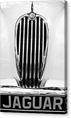 1955 Jaguar Grille Emblem Canvas Print by Jill Reger