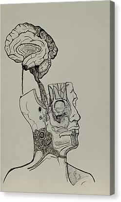 A Bright Idea Canvas Print by Nickolas Kossup