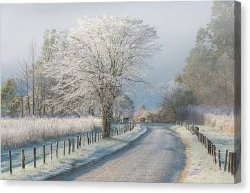 A Frosty Morning Canvas Print by Chris Moore