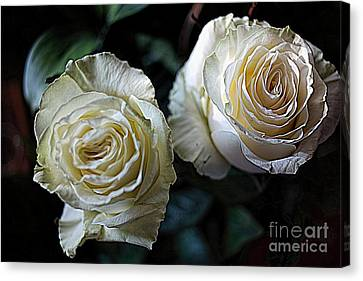 A Perfect Pair Canvas Print by Diana Mary Sharpton