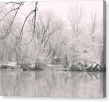 A Whisper Of Snow Canvas Print