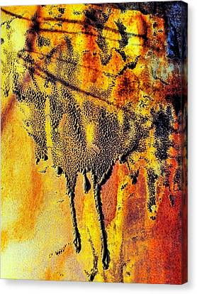 Ablaze Canvas Print by Tom Druin