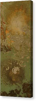 Abstract Canvas Print by Corina Bishop