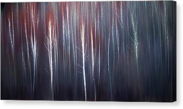 Abstract Trees With Motion Blur Canvas Print by Ron Harris