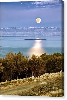 Adriatic Moon Canvas Print by Sinisa Botas