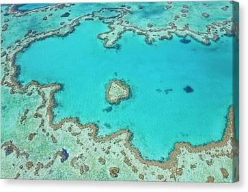 Aerial View Of Heart Reef, Part Canvas Print by Peter Adams