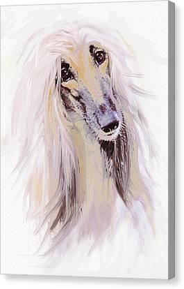 Afghan Hound Canvas Print by Jane Schnetlage
