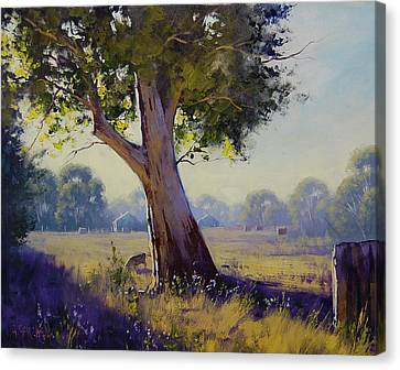 Afternoon Light Grazing Canvas Print