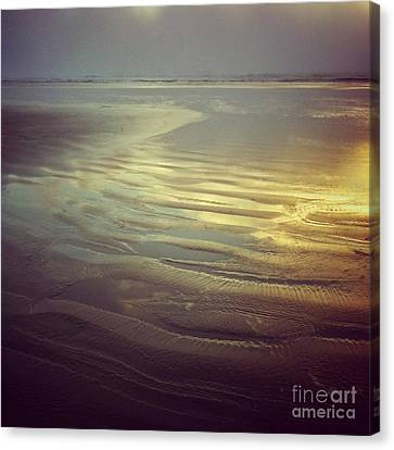 Agate Beach Sunset Canvas Print by Andrea Gingerich