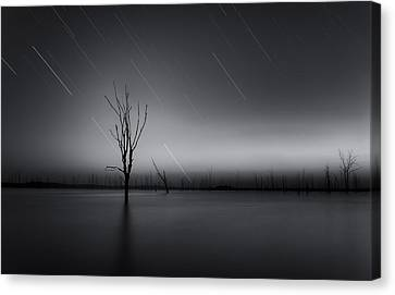 Startrails Canvas Print - Alive by Taylor Franta