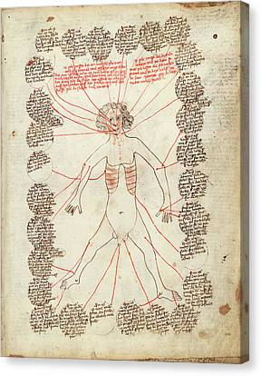 Gothic Germany Canvas Print - Allegorical Medical Man by Library Of Congress