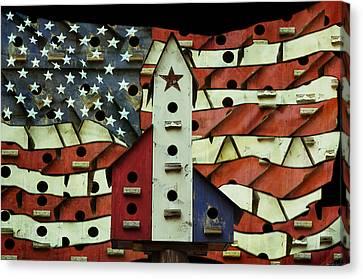 American Birdhouse Canvas Print by Steven  Michael