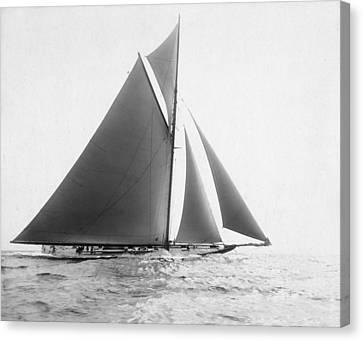 American Independance Canvas Print - America's Cup, 1901 by Granger