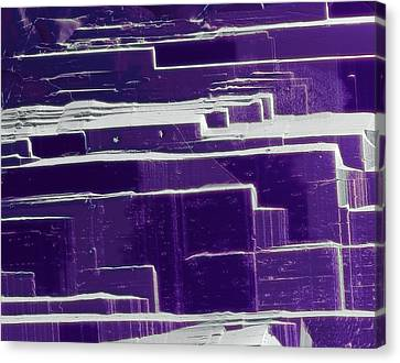 Amethyst Canvas Print by Steve Gschmeissner