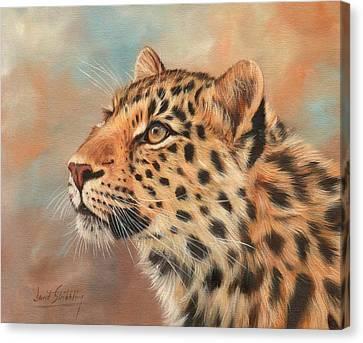 Amur Leopard Canvas Print by David Stribbling