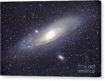 Andromeda Galaxy Canvas Print by Chris Cook