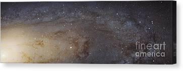 Andromeda Galaxy Mosaic Canvas Print by Robert Gendler