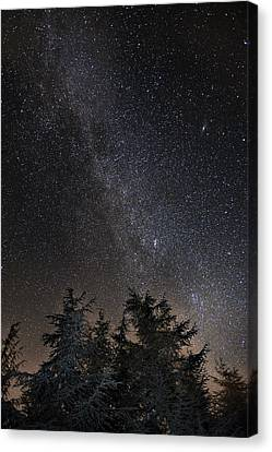 Andromeda Galaxy Perseus And Milkyway Over The Forest In The Mountains Canvas Print by Guido Montanes Castillo