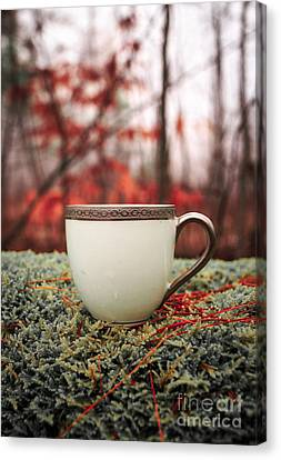 Pine Needles Canvas Print - Antique Teacup In The Woods by Edward Fielding