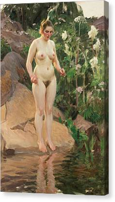 Archipelago Flower Canvas Print by Anders Zorn