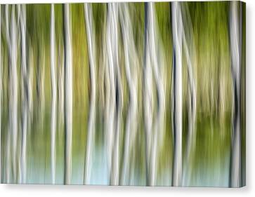 Artistic Abstract Of Trees Canvas Print by Rona Schwarz