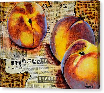 Asian Peaches Canvas Print by JAXINE Cummins